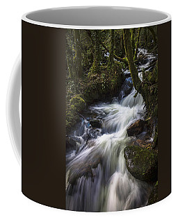 Coffee Mug featuring the photograph Stream On Eume River Galicia Spain by Pablo Avanzini