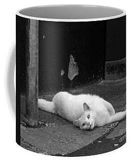 Street Cat Coffee Mug