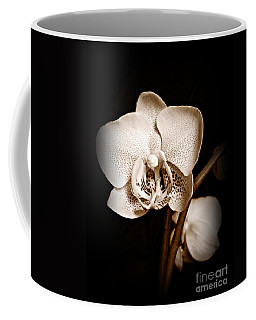 Strength And Beauty Sepia Coffee Mug