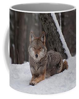 Striking The Pose Coffee Mug