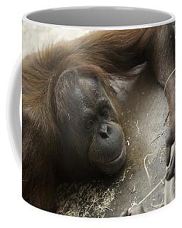 String Theory I Coffee Mug
