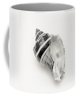 Striped Sea Shell 2 Coffee Mug