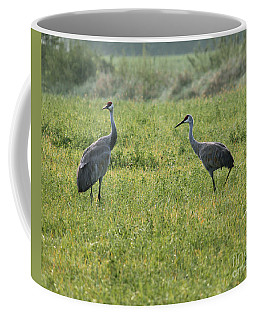 Coffee Mug featuring the photograph Strolling Cranes by Debbie Hart