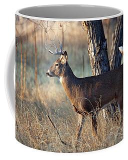 Coffee Mug featuring the photograph Strutting Buck by Jim Garrison