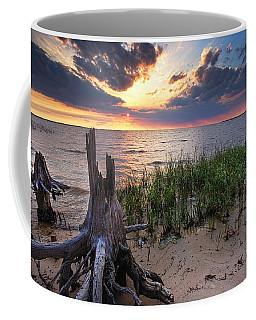 Stumps And Sunset On Oyster Bay Coffee Mug