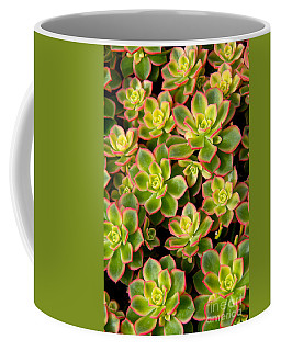 Succulent Glow Coffee Mug by Suzanne Oesterling
