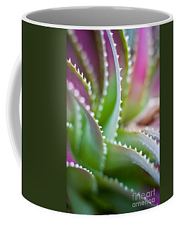 Succulent Swirls Coffee Mug