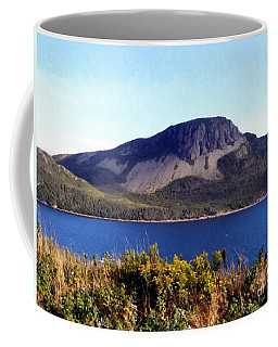 Coffee Mug featuring the painting Sugarloaf Hill In Summer by Barbara Griffin
