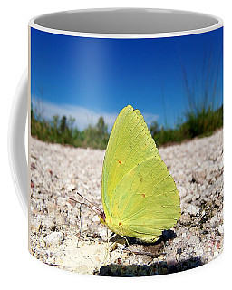 Coffee Mug featuring the photograph Sulphur Yellow Butterfly by Chris Mercer