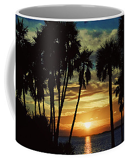 Coffee Mug featuring the photograph Sultry Sunset by Janie Johnson
