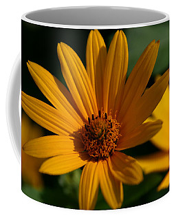 Coffee Mug featuring the photograph Summer Delight by Denyse Duhaime