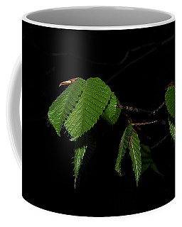 Summer Leaves On Black Coffee Mug