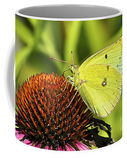Summer Meadow  Coffee Mug by Adam Olsen