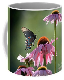 Summer Morning Light Coffee Mug