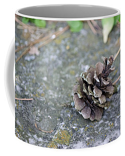 Summer Pinecone Coffee Mug