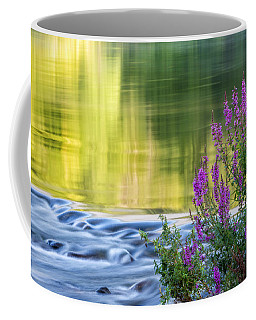 Summer Reflections Coffee Mug
