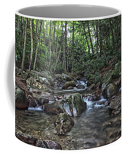 Coffee Mug featuring the photograph Summer Stream In Ohiopyle by Jeannette Hunt