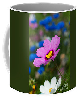 Coffee Mug featuring the photograph Summer Wild Blooms by Matt Malloy