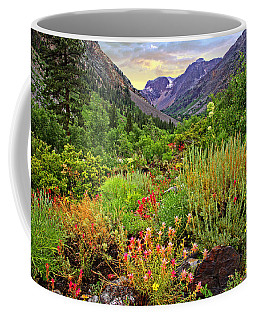 Summer Wildflowers In Lundy Canyon Coffee Mug