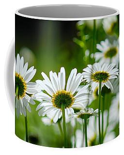 Summer Time Daisys Coffee Mug