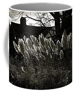 Sun And Shadow Coffee Mug