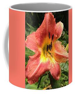 Sun Day Lilly  Coffee Mug