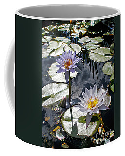 Sun-drenched Lily Pond         Coffee Mug