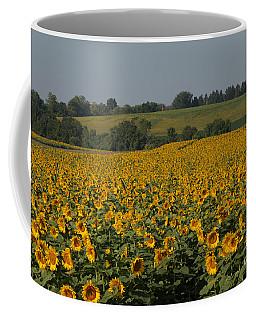 Sun Flower Sea Coffee Mug