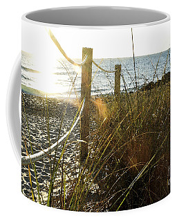 Sun Glared Grassy Beach Posts Coffee Mug