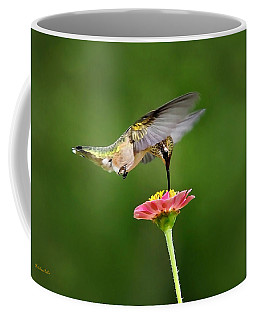 Coffee Mug featuring the photograph Sun Sweet by Christina Rollo