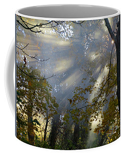 Coffee Mug featuring the photograph Sunbeam Morning by Dianne Cowen
