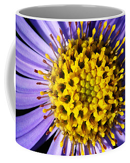 Coffee Mug featuring the photograph Sunburst by Wendy Wilton