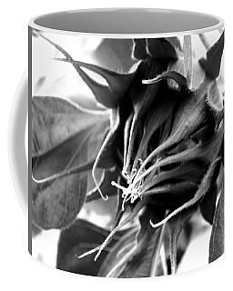 Coffee Mug featuring the photograph Sunflower Beginning by Sandi OReilly