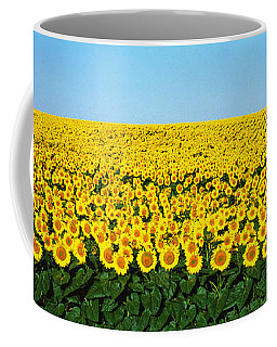 Sunflower Field, North Dakota, Usa Coffee Mug