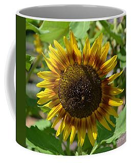 Sunflower Glory Coffee Mug