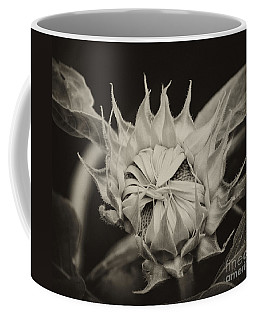 Coffee Mug featuring the photograph Sunflower Grand Opening by Wilma  Birdwell