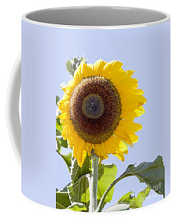 Coffee Mug featuring the photograph Sunflower In The Blue Sky by David Millenheft