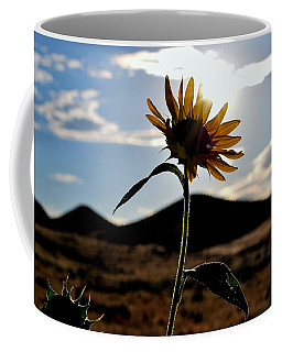 Coffee Mug featuring the photograph Sunflower In The Sun by Matt Harang