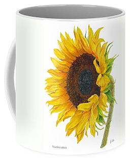 Sunflower - Helianthus Annuus Coffee Mug