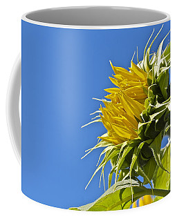 Sunflower Coffee Mug by Linda Bianic