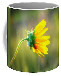 Sunflower Sunrise 6 Coffee Mug