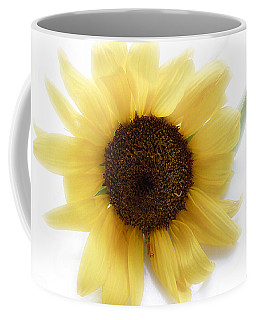 A Single Sunflower In Color Coffee Mug