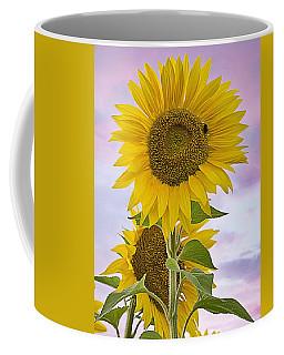 Sunflower With Colorful Evening Sky Coffee Mug