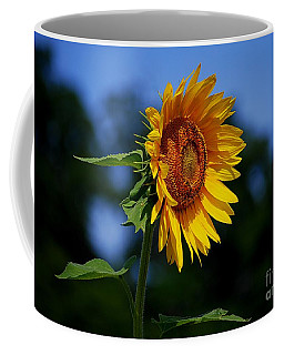 Sunflower With Honeybee Coffee Mug by Catherine Sherman