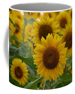 Sunflowers At The Farm Coffee Mug