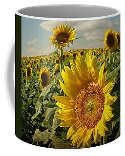 Kansas Sunflowers Coffee Mug by Chris Berry