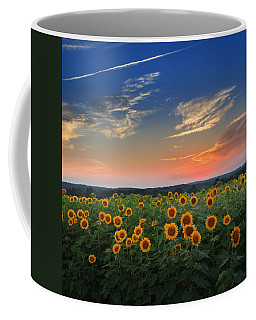 Sunflowers In The Evening Coffee Mug