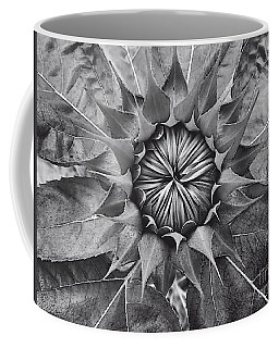 Sunflower's Shades Of Grey Coffee Mug by Elizabeth Dow