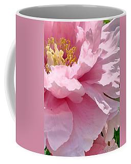 Sunkissed Peonies 1 Coffee Mug