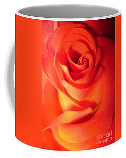 Sunkissed Orange Rose 10 Coffee Mug